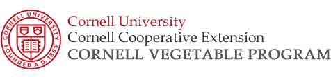Cornell Vegetable Program